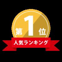 人気ランキング 第一位 琵琶湖 白髭 SUP体験