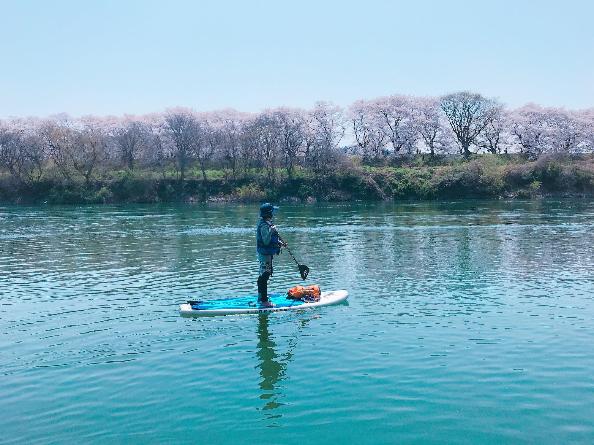 人混みを避けて水上で桜を楽しむことが可能