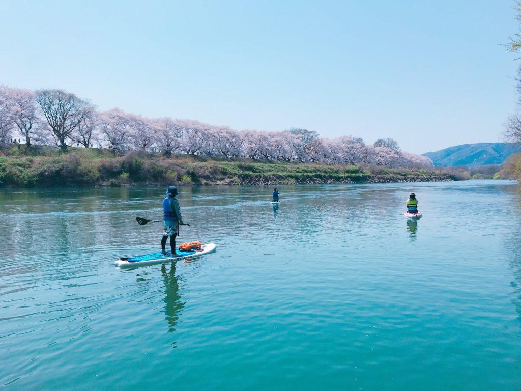 桜の時期は関西NO1の花見スポットに!